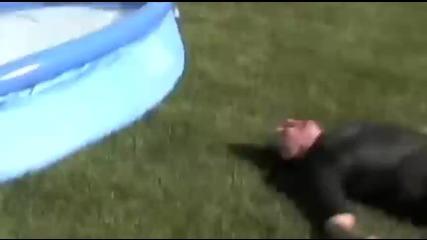 Неуспешен опит за скок в басейн от покрива на къща