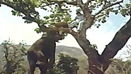 хинди филм 1976-2 бг суб.