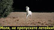 Капризни коне - Владимир Висоцки-караоке - Кони привередливые