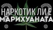 Наркотик ли е марихуаната?