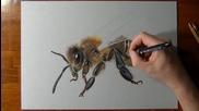 Рисуване на 3 D пчела
