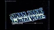 Sinan Sakic Jujni Vetar Koncert