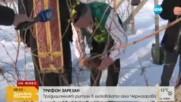 Зарязване на лозите в село Черногорово