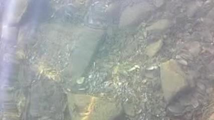 Морско дъно