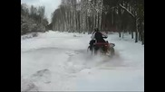 Kawasaki Brute - Force 750 Winter Edition