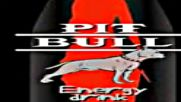 Pit Bull Energy Drink Commercial 2 2009via torchbrowser.com 5