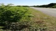 Жена самокатастрофира на пътя София - Варна