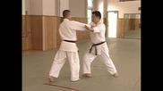 Йошикан Айкидо / Yoshikan Aikido - всички основни техники - Йонка - джо {част4}