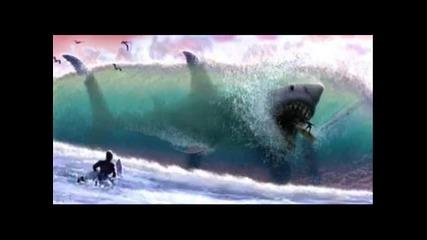 Акулите са добър приятел на човека ;дд