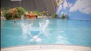 Изумителен воден парк в Германия