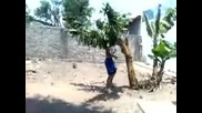Чупене на дърво с крак !!!