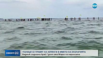 Поляци се правят на херинги в името на екологията