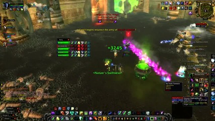 zul gurub zanzil fight (order of respect) molten-wow