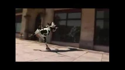 Лудата Крава - Голям Смях