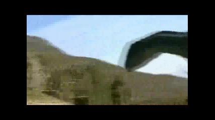 Allosaurus-Faint
