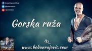 Boban Rajovic 2013 - Gorska ruza - Prevod