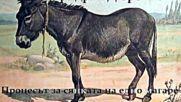 Фридрих Дюренмат - « Процесът за сянката на едно магаре », радиотеатър