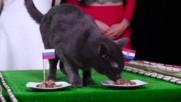 Мечтата на Модрич е жива! Ще успеят ли да победят домакините пред погледа на Путин?