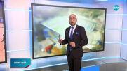 Спортни новини (06.08.2020 - следобедна емисия)