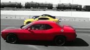 Drag между Camaro Hpe650 , Dodge Challenger и Mustang Shelby Gt500 Super Snake 2010