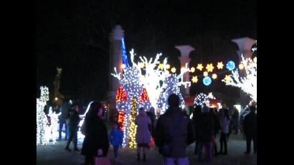 Варна - Коледа 003
