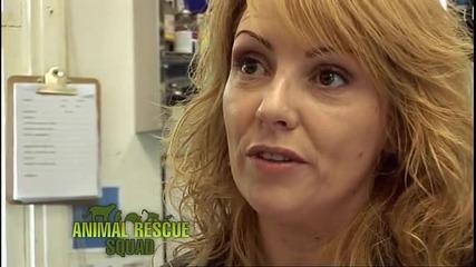 Зооспасители (Animal Rescue Squad) S02E10