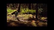 Динозаври (част 18)