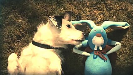 Смешни реклами за кучето Харви