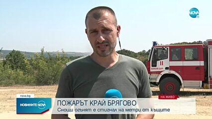 Застрашава ли пожарът край Брягово жителите на селото