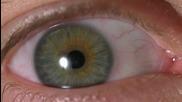 Човешкото око на забавен кадър