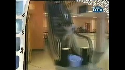 (скрита камера) Ако под ескалатора се сложи леген с вода...