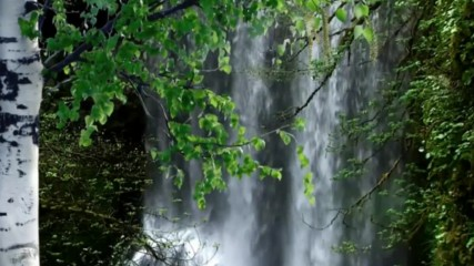 Кръговратът на природата ... (music by Tim Janis)