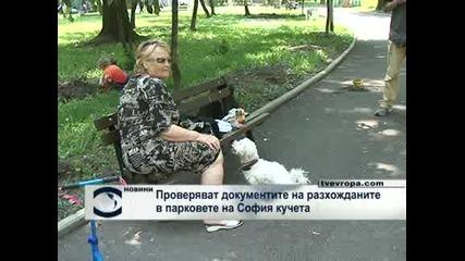 Ще проверяват документите на разхожданите в парковете кучета