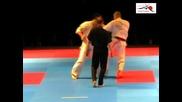 European Kyokushin Championship 2011-lukas Kubilius-sandor Kovacs