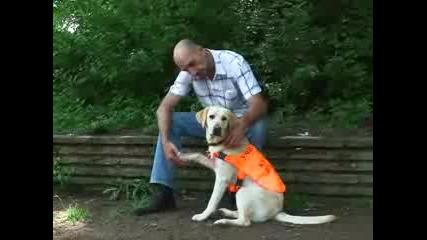 Кучета към фондация Очи на четири лапи приеха традиционно кръщение