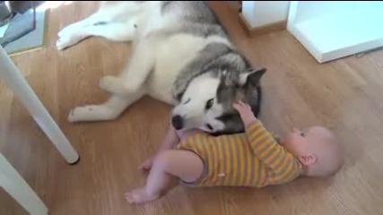 Любов между куче и бебе