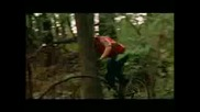Street - Mountain Bike