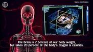 10 Неща, които не знаете за собственото си тяло!