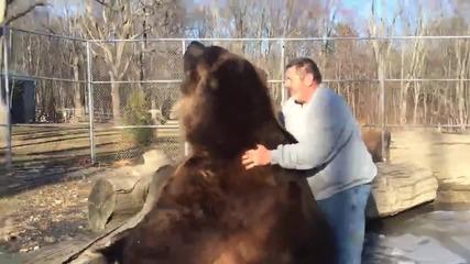 Невероятно!!! Мъж си играе с огромна мечка!