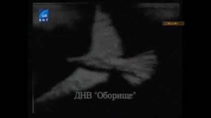 Спомен за Илия Минев (част 1/3) - Последната свобода