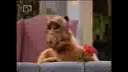 Alf 3*26