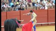Корида - Севиля,  Испания #6