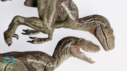 You Can Visit Real Dinosaurs Before Seeing 'Jurassic World'