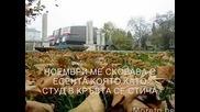 Петя Дубарова-Ноемврийски дни