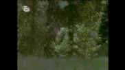 trimata muskitari bg audio chast 1 film na walt disney vbox7