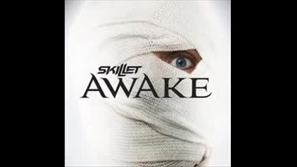 Skillet awake - Hero