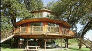 Хора, които строят и живеят в къщи върху дървета - и печелят пари от това
