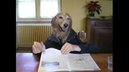 Куче яде с вилица и чете списание