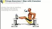 Uprajnenie za Triceps - Domashni usloviia