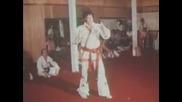Elvis Presley - Tiger Man